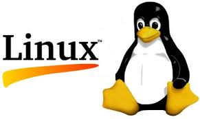 Linux Root Server