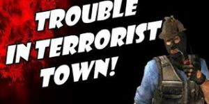 Trouble in Terrorist Town Server